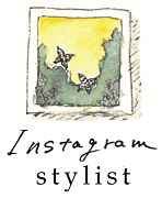 instagram stylist